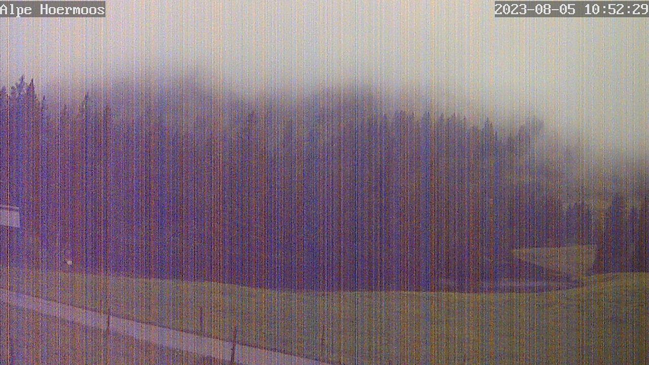Webcam Skigebiet Oberstaufen - Steibis Alpe H�rmoos - Allg�u